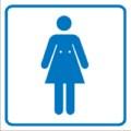 Piktogramm, Damen-Toilette Restbestände vorhanden